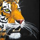 Tiger Babu